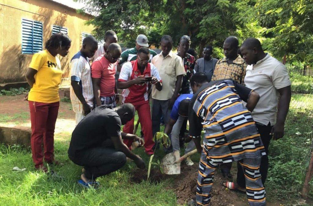 Ouaga : Des anciens élèves reverdissent l'école « Tampouy D »