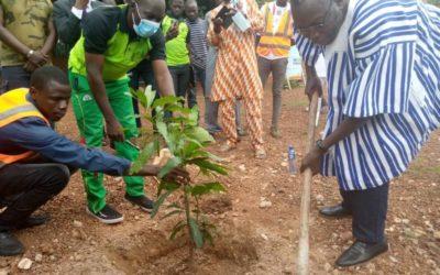 Burkina Faso : L'ANEREE plante des arbres à l'Ecole Supérieure Polytechnique de la jeunesse