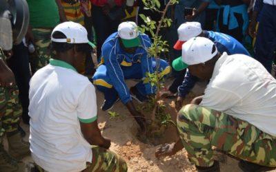 Reboisement à Ouaga : L'ONI apporte 2500 plants