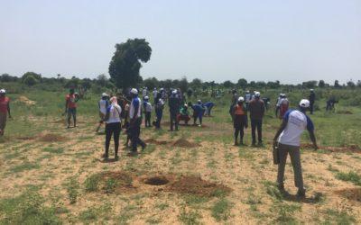 Burkina Faso : 500 plantes mises sous terre dans la commune de Koassanga